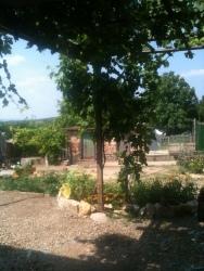 A Bulgarian Garden
